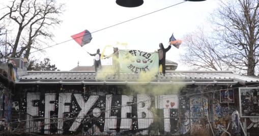 Video: Animolotov