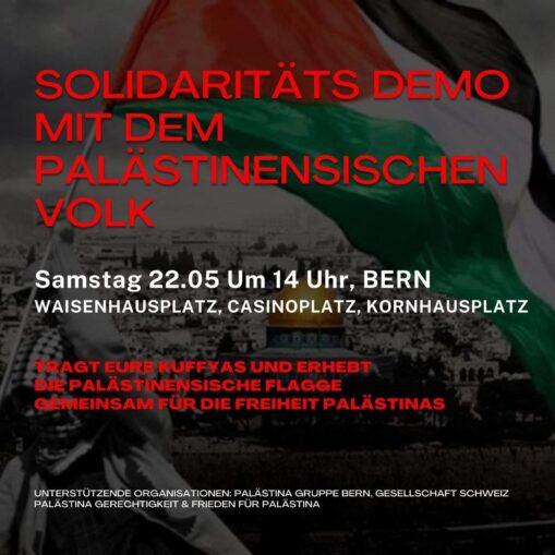 Solidaritätsdemo Palästina